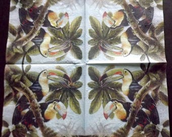 Toucan bird paper towel 1