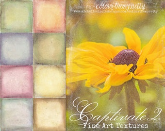 50% OFF! Captivate 2 {Fine Art Textures} Texture Overlays and Backgrounds