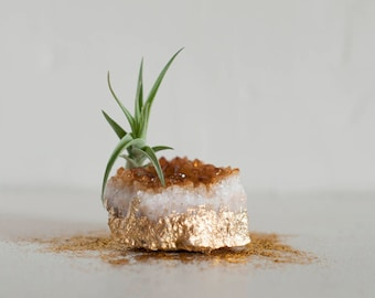 Citrine Crystal, Best Friend Gift, Crystal Air Plant, Tillandsia, Aunt Gift, Gold Dipped Citrine Cluster, Airplant Crystal, Desk Accessories