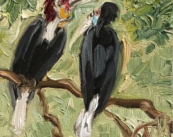 "Wreathed Hornbills, 4"" x 4"", oil on panel"