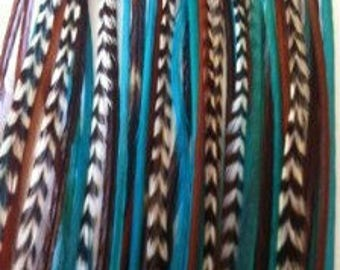 "7""-10"" Turquoise & Brown 5 Feathers"