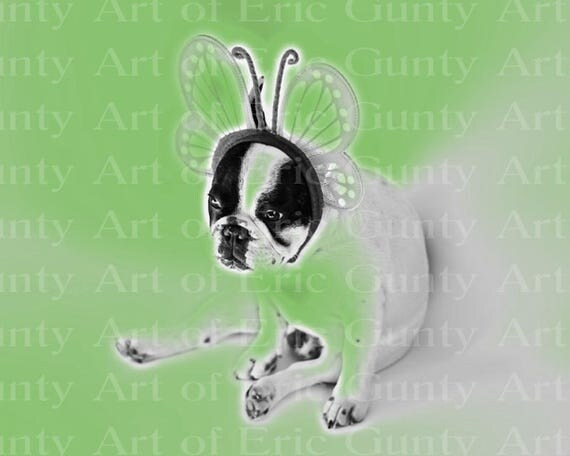 Artistic Butterfly Puppy Dog Birthday - Edible Cake and Cupcake Topper For Birthdays and Parties! - D22876