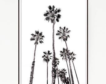 Printable Palm Trees Wall Decor Print Poster Tropical Beach Marine Art Landscape Black White Nature Sea Minimalist Banana Leaf Sky 1027