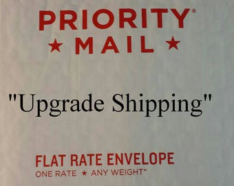 Upgrade Shipping USPS Priority Mail (ONLY)