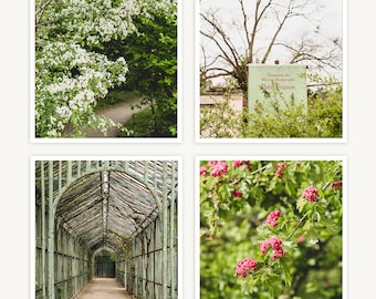 """Versailles, France Travel Photography, """"Marie Antoinette Garden Details"""", Set of 4 Square Fine Art Prints, Gallery Wall, Home Decor, Gift"""