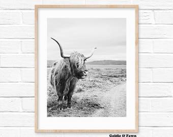 Black and White Highland Cow Print, Digital Print Download, Photography Print, Nursery Print, Scandinavian digital print