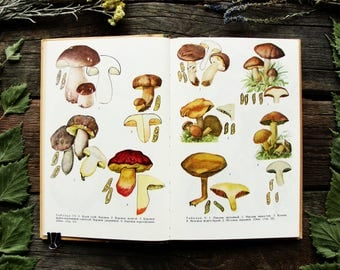 Edible and Poisonous Mushrooms - 44 Color Plates - Hardcover - Vintage Botanical Book, 1970. Fungus Boletus Drawing Illustration Print