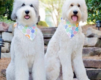 Spring Easter Eggs Dog Bandana || Funny Bunnies White Personalized Easter Pet Scarf || Personalized Puppy Gift by Three Spoiled Dogs