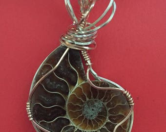 Nautilus Fossil Ammonite wrapped in Silver and Pink Gold