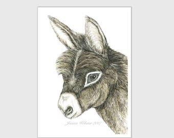 Donkey painting, mule print, donkey print, donkey art, baby donkey painting
