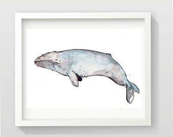 Original Watercolor Portrait of a Grey Whale | Whale Illustration | Marine Animal Art | Marie-Eve Arpin | Handmade Watercolor | Animal Deco