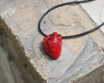 Anatomically Correct Heart -Anatomical Heart Medium