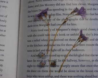 Violets and Forget Me Nots Real Pressed Flowers Page Keeper