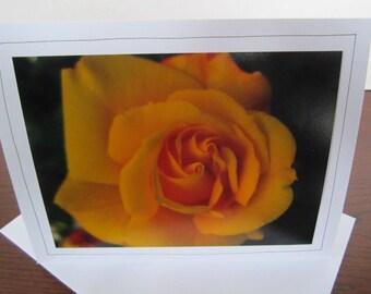 Photo Greeting Card   Handmade Card   Photo Note Card   Original Photography   Rose