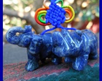 Flying Star Blue Rhinoceros & Elephant Charm - E