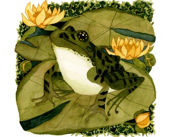 The Leopard Frog