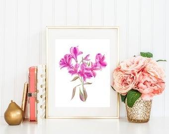 Hot pink bedroom Lily watercolor Bathroom artwork For stepmom Alstroemeria digital Printable women gift Above bed art Lovely home idea