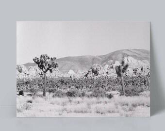 Photography, Desert, Cactus, Joshua Tree, Digital download, Digital Print, Landscape, Digital Wall art, Prints, Poster