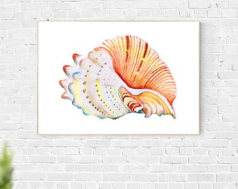 Sea Shell Art, Printable Instant Digital Download Art, Wall Art, Home Decor, Sea Art, Ocean Art, Digital Print, Minimalist