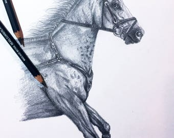 Custom Horse Drawing - Custom A4 Horse Graphite Drawing