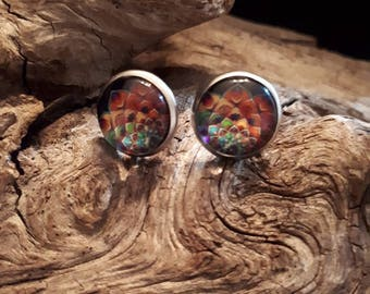 Earrings style cabochon 12 mm, multicolor, stainless steel or wood