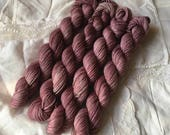 Fading Roses on Mini Nest Mini Skein Sock Yarn