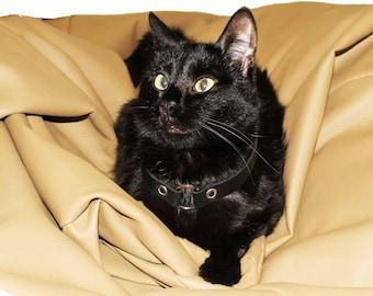 pet accessories black collar black leather cord dog collar cat necklace pet necklace pet id tag pet jewelry pet tags leather collar pet gift