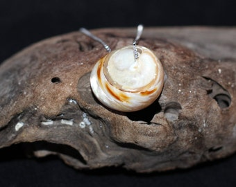 Polished Shell Necklace