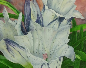 Arctic Gentians II, set of 5 Note Cards with envelopes from Original Watercolor Painting