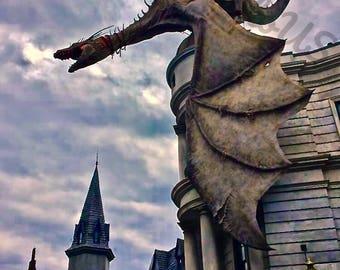 Dragon Photography Print