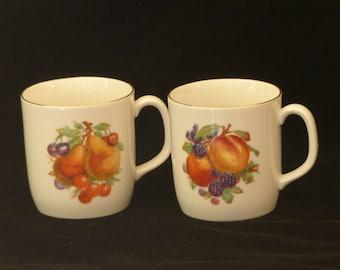 2 Bareuther Waldsassen Bavaria Germany Mugs 244 Fruit Design