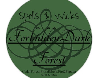 Forbidden Dark Forest