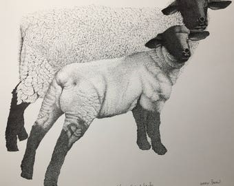 Drawing Pen and Ink Print, Stippling, Ewe and Lamb