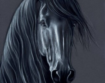 Friesian Stallion Horse Original Charcoal Painting