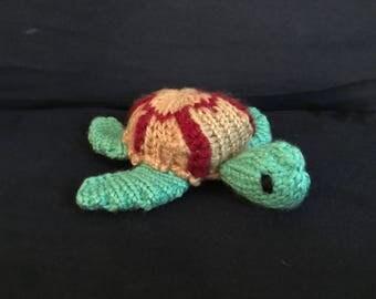 Sean Sea Turtle