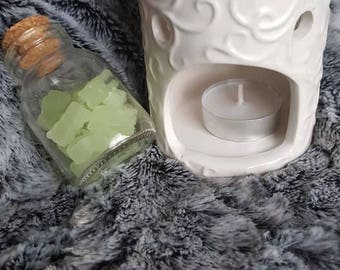 White Ceramic Candle Powered Wax and Oil Warmer with Bear Wax Scent Shapes