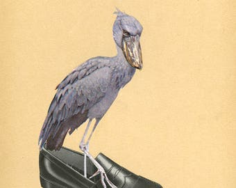 Loafering shoebill.  Original collage by Vivienne Strauss.