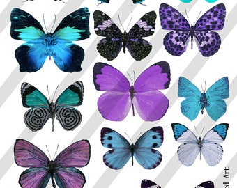 Digital Collage Sheet, Butterflies in blue and purple (Sheet no. O259) Instant Download, PNG Sheet Included
