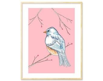 Cute Bird Art, Baby Shower Gift, Pink Nursery Print, Animal Print, 8.5x11 Print, Sweet Art, Pink Children's Art, Kids' Decor, Bluebird Art