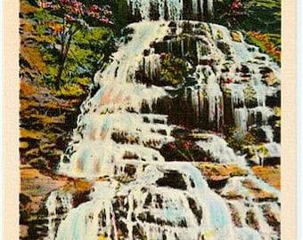 Vintage South Carolina Postcard - Issaqueena Falls (Unused)