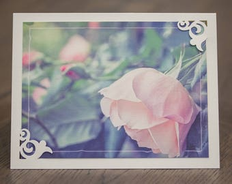 Dreamy soft pink rose blank greeting card