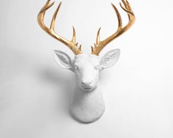 Faux Taxidermy Wall Mounts Deer To Unicorn By