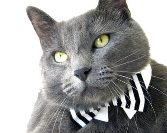 Black and White Striped Bow Tie, Necktie, or Bow on a Shirt Style Collar for both Dogs & Cats