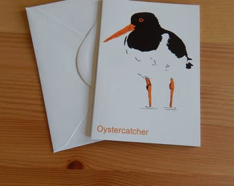 Oystercatcher Card