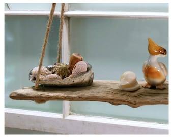 2 Tier Driftwood Shelf, Zero Hardware 2 Shelves, Earthy Rustic Beach Ocean Decor, Natural Wood Shelves, Abalone Shell Dish
