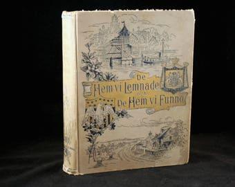 De Hem vi Lemnade och De Hem vi Funno, 1893 Swedish Hardcover Book, Antique Illustrated Book