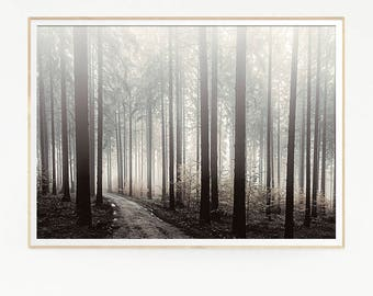 Path Way Road Pine Tree Wall Decor Nordic Print Poster Scandinavian Landscape Wild Nature Wilderness Green Minimalist Forest Misty 1020