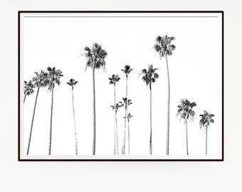 Palm Trees Wall Decor Print Poster Tropical Beach Marine Art Landscape Black White Nature Sea Minimalist Banana Leaf Photography Sky 1047