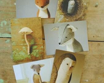 Willowynn nature art postcard set of six  / featuring soft sculpture creatures by Margeaux Davis