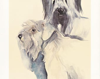 Sealyham Skye Terrier working dog breed vintage print illustration gift for dog lover owner portrait by Willy E. Bär 8x11.5 inches